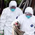 Първи случай на птичи грип в България