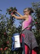 Българските фермери са против отпадането на директните плащания