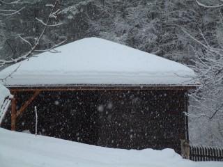 Tsanev@dir.bg | Здрава зима | 0 харесвания