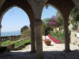 Баба Яга и седемте джуджета | Пролет в ботаническата градина - Балчик | 59 харесвания