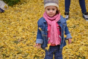 Toniivan99@abv.bg | Детска радост | 6 харесвания
