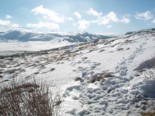 Jpeovska@abv.bg | стъпките ни в снега | 11 харесвания