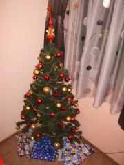 Galya | Коледна елха | 133 харесвания