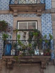 Лоррка | Порто | 31 харесвания