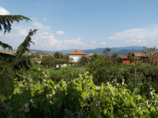 LucyH | село Чавдар | 38 харесвания