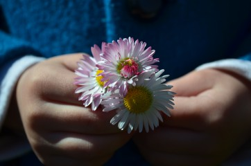 Irina_ninova | паричка в детска ръчичка 1 | 5 харесвания