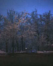 Юлия | Зима в Смолян | 8 харесвания