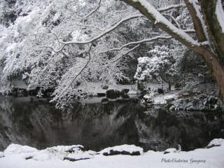 Ekaterinatg@hotmail.com | Снежно спокойствие | 46 харесвания