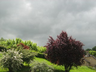 Teo13a@yahoo.com | пролет | 34 харесвания