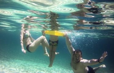 Didigem@abv.bg | underwater | 5 харесвания