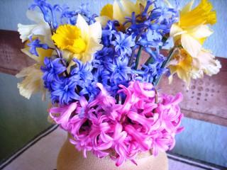 Vilidimova   С ухание на пролет!   24 харесвания