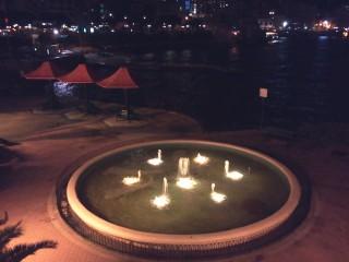 Vikipetrova | Malta | 10 харесвания