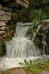 Stef lvanova | Пролетни води | 24 харесвания