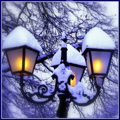 Aivaceda   Snowy Lights2   86 харесвания