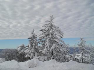 Vendeta.angelova@gmail.com   winter sky   52 харесвания