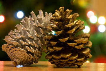 Dopitanka | Коледна украса | 3 харесвания